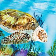 Reef Surfin Print by Tanya L Haynes - Printscapes