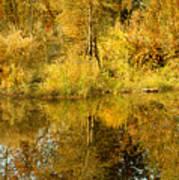 Reflecting On Autumn Leaves Art Print