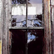 Reflection - In - The - Window  Art Print