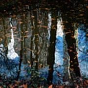 Reflection 3 Art Print