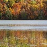 Reflection Of Autumn Colors In A Lake Art Print