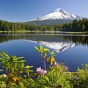 Reflection Of Mount Hood In Trillium Art Print by Craig Tuttle