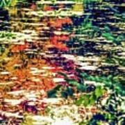 Reflection On Oscar - Claude Monet's  Garden Pond  Art Print