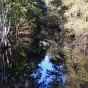 Reflections At Camps Creek  Art Print
