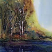 Reflections Art Print by Carolyn Doe