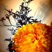 Reflections In Orange Art Print