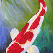 Reflections Koi Art Print