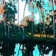 Reflections of Palms Gulf Coast Florida Art Print