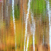 Reflections Of The Canadian Fall Art Print
