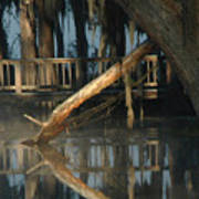 Reflections On Lake Pretty  Art Print