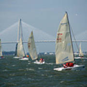 Regatta In Charleston Harbor Art Print