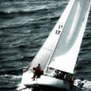 Regatta Sailboat Races Art Print