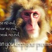 Regulation Of A Monkey Art Print