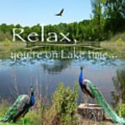 Relax Lake Time-jp2737 Art Print