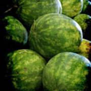 Renaissance Green Watermelon Art Print