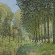Rest Along The Stream - Edge Of The Wood Art Print