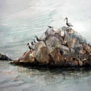 Resting Place - Corona Del Mar Ca Art Print