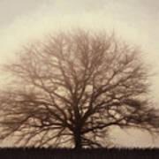 Retro Foggy Tree Art Print