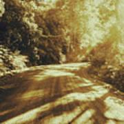 Retro Rainforest Road Art Print