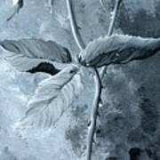 Retro Rose Art Print