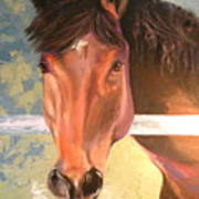 Reverie - Quarter Horse Art Print