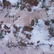 Reversing The Roles - Soil Dusting A Crispy Snow Art Print