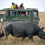 Rhino Inn Tanzania Art Print