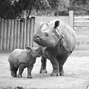 Rhino Mom And Baby Art Print