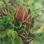 Rhubarb Spy Art Print