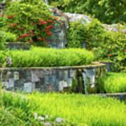 Rice Garden Art Print