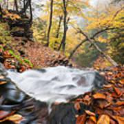 Ricketts Glen State Park Ganoga Falls Allegheny Mountains Pennsylvania Art Print