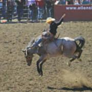 Ride Em Cowboy Art Print