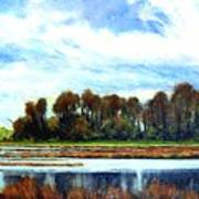 Ridgefield Refuge Early Fall Art Print