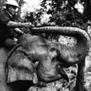 Riding The Elephant Art Print