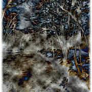 Ridley Creek Art Print