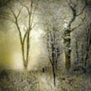 Rimy Forest Windy Daybreak By Laszlo Mednyanszky 1896 Art Print