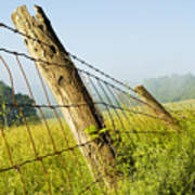 Rising Mist With Falling Fence Art Print