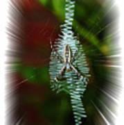 'ritin' Spider Art Print