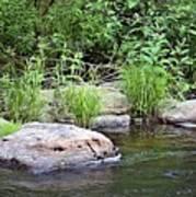 River At Duchesne Falls Art Print