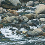 River At Sierra Subs Art Print