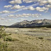 River Bed In Denali National Park Art Print