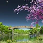 River Bridge Cherry Tree Blosson Art Print