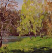 River Forks Spring 2 Art Print