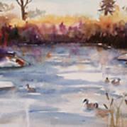 River Geese Art Print