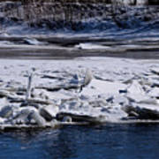 River Ice Art Print