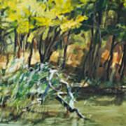 River In Summer Art Print