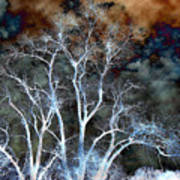 River Oak Dream Art Print