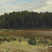 River On The Edge Of A Wood Art Print