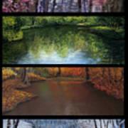 River Seasons Art Print by Susan Jenkins