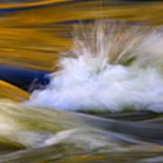 River Print by Silke Magino